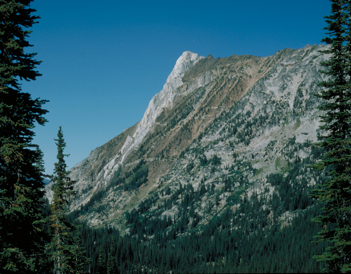 A tall peak dominates the image.  A few scattered trees dot the hillside, and tall pines frame the shot.