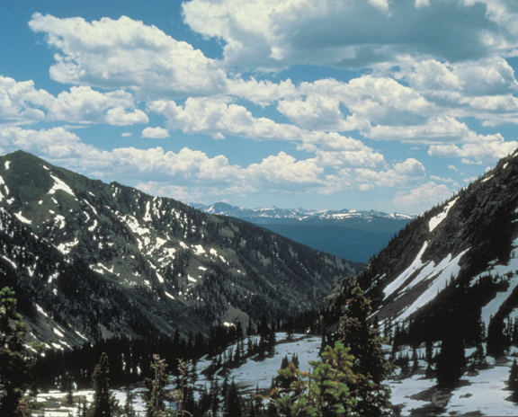 Snowy mountains rest under a cloudy blue sky.  Pine trees stand in the shadows of the clouds.