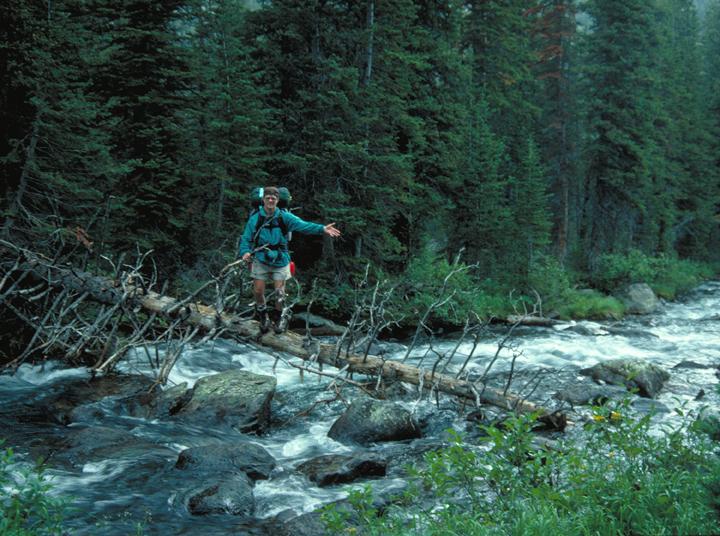 A man waves from half way across a dead tree serving as a makeshift bridge across a river.