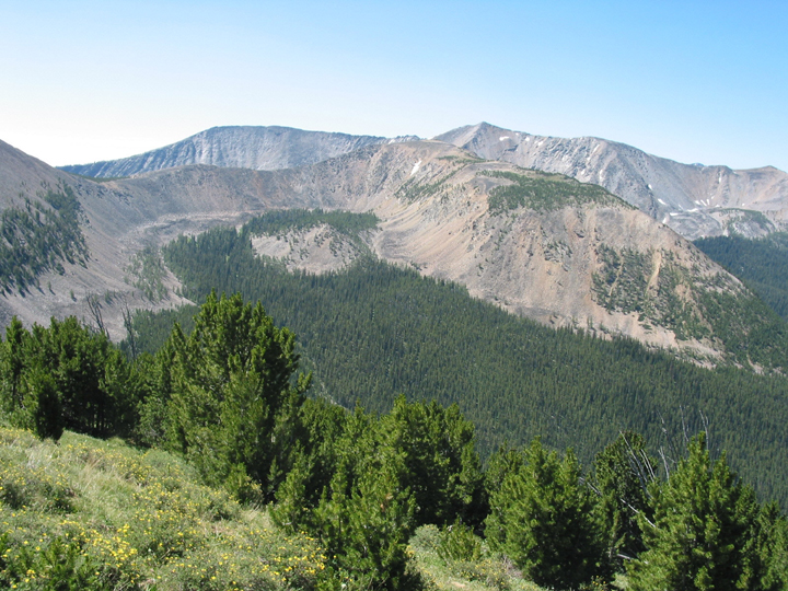 A shot from the side of one of the mountains captures the Queener Basin where dense populations of pine dwell.