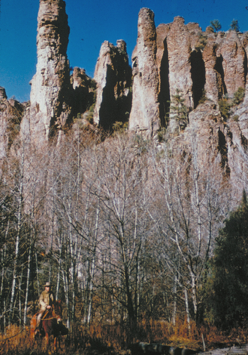 Tall, columnar rocks make the top third of the picture; a horseback rider winds through the white skeleton trees below.