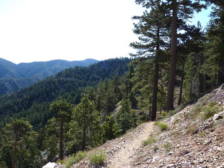 A tiny path weaves along the ridgeline, providing a bird's eye view of the forest and valley below.