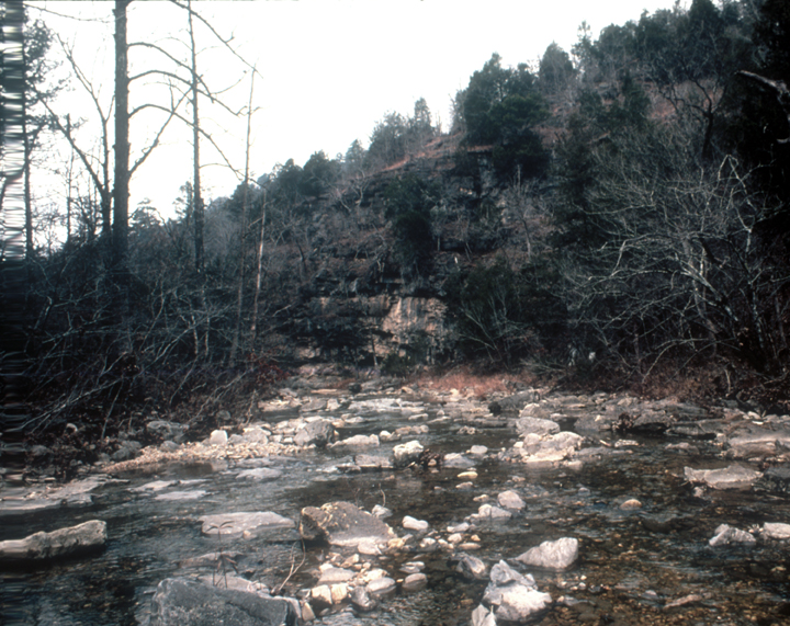 A rocky creek bed in late fall or early winter.