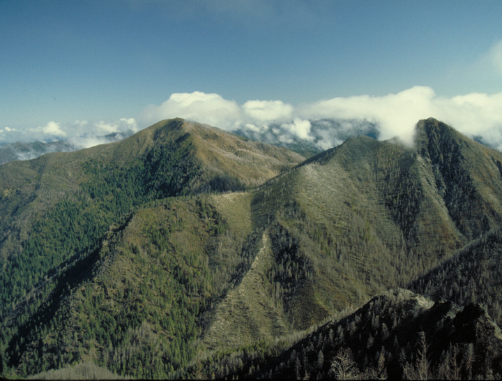 The mountains are high and dramatic, sides forested and tops kissing the level of the clouds.