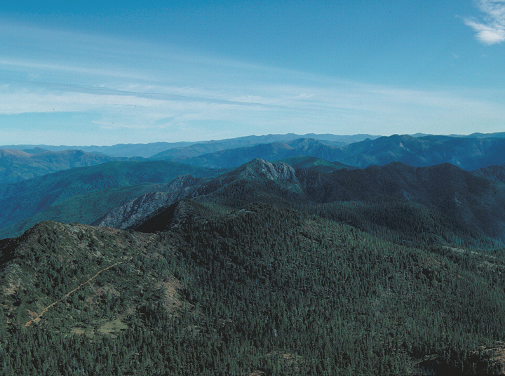 An aerial view of heavily forested hills, with one weaving trail over the ridge being visible.