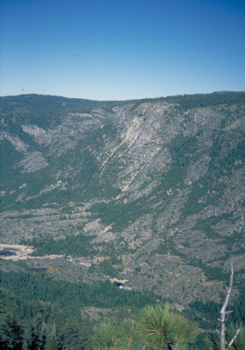 The valley is surrounded by dramatic vertical cliffs, on which trees can be seen growing.  The river at the bottom is almost obscured from this viewpoint.