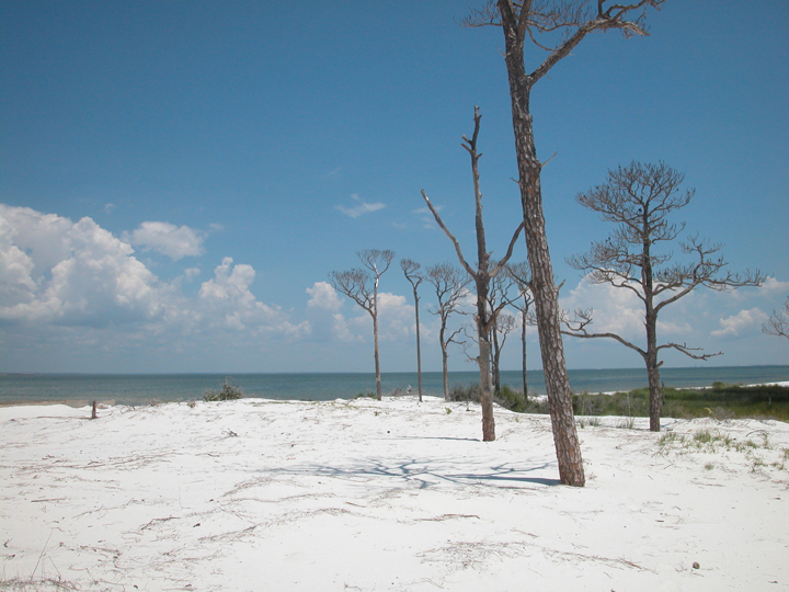White sand stretches out to the far off shore.  A line of barren trees can be seen.