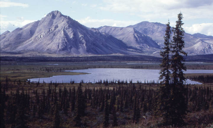 A small lake in the base of a large valley surrounded by marshy tundra and low trees, gray rocky mountains rise in the near distance.