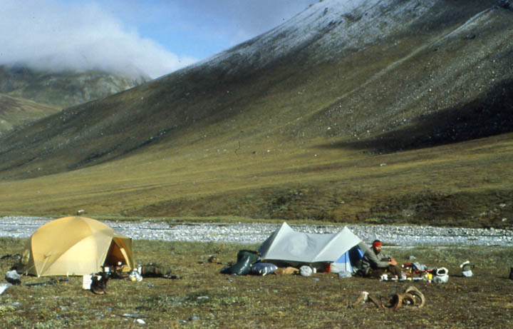 Two small tents pitched on the grassy tundra along a river bed. Sweeping mountains rise from the far side of the river, frosted with new snow above.