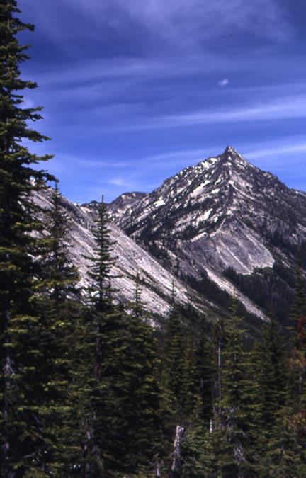 A border of evergreen trees in the foreground, frame a view of a lone peak in the distance, under a blue sky with wispy clouds.