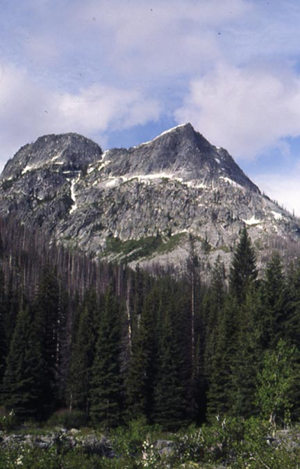 A jagged peak of gray rock rising high above dense forest below.