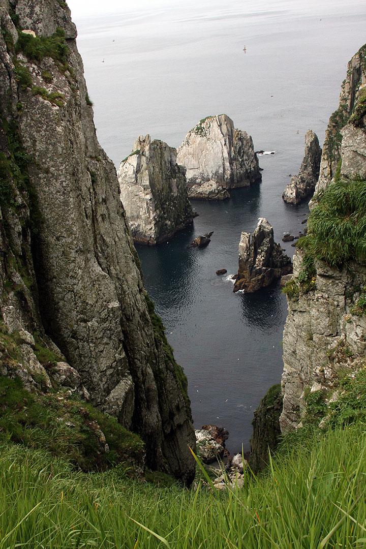 A view through grass down a cliff to rocky islands