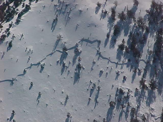 An aerial shot of an area covered in snow and a break in the sheet of snow looks like a fault line where a possible avalanche could start.
