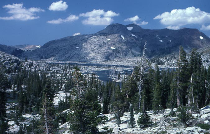 Looking out over a stand of evergreen trees in the foreground to a small alpine lake in the distance, backed by a low rocky peak beyond.