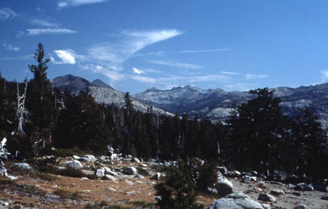 A small rocky meadow surrounded by alpine forest, backed by low mountains in the distance.