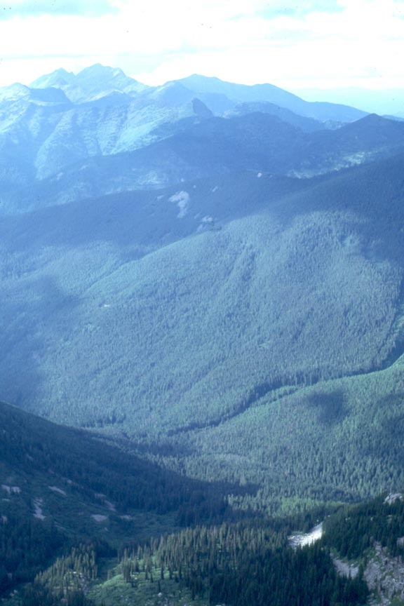 Looking down over a large river valley, covered in dense forest and surrounded by low mountains.