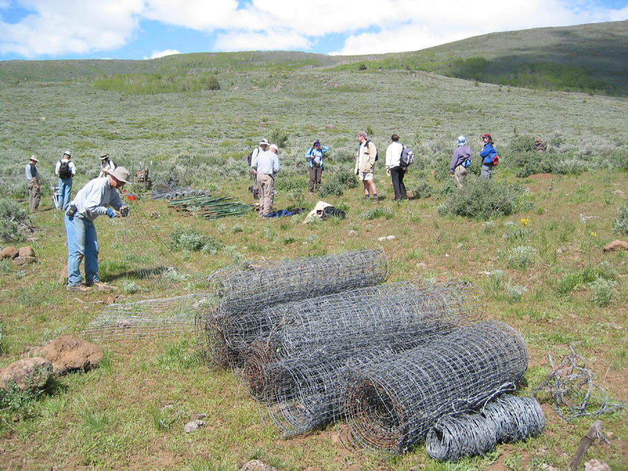 A group of workers standing in an open grassy green valley, near several large rolls of wire fencing.