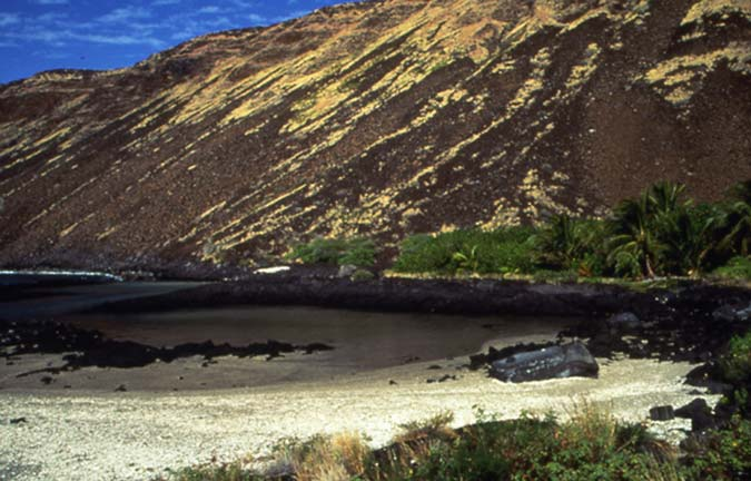 A small pool of water surrounded by white sand and black  rock, bordered by a strip of lush green foliage, and a barren hillside of brown and yellow rock.