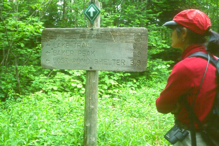 A female hiker in a red shirt, reading a signpost along the trail, surrounded by dense green forest.