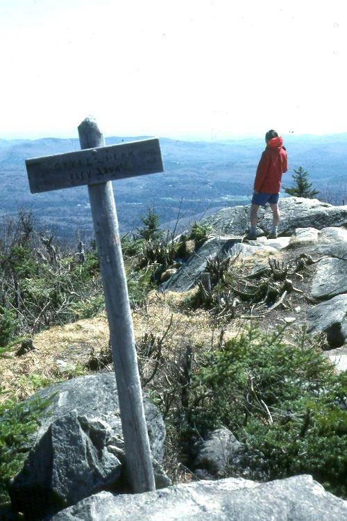 A lone hiker in a red jacket, standing next to a marker pole, high on a rocky overlook above a woodland valley.