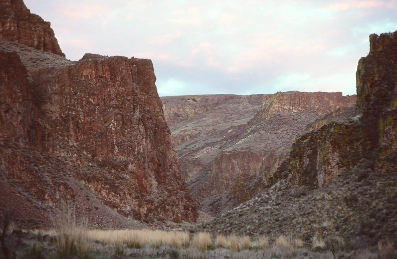 Looking up the base of a large canyon, the bare rock faces rising from the grassy floor below.