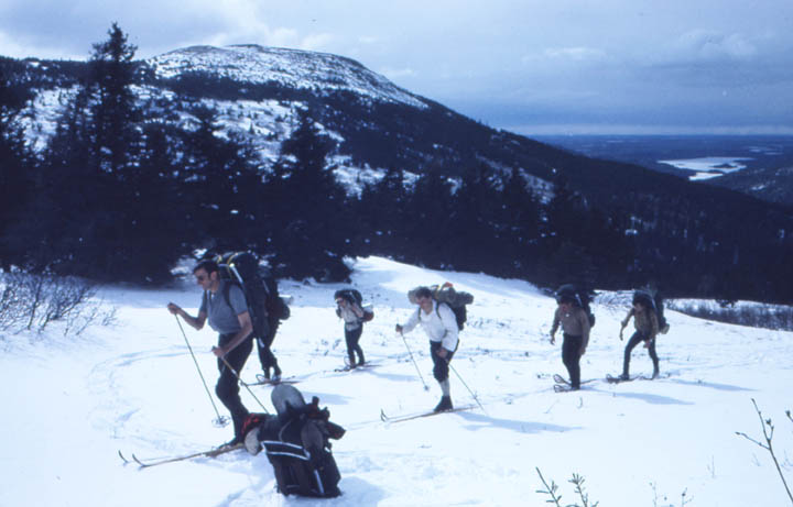 A group of skiers ascending a low hill, covered in deep snow and open forest.