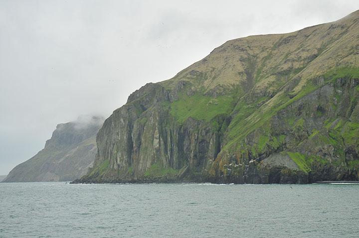 Steep green cliffs fall to the ocean