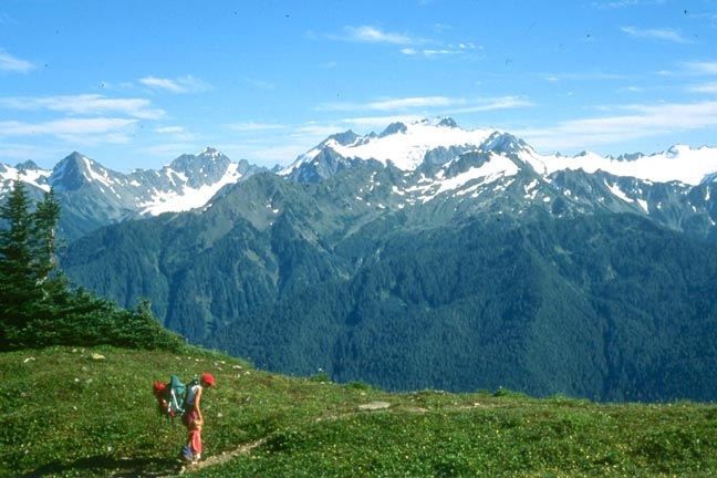 A lone backpacker traversing a narrow path across a small open meadow, looking across an immense valley to high snocapped peaks on the other side.
