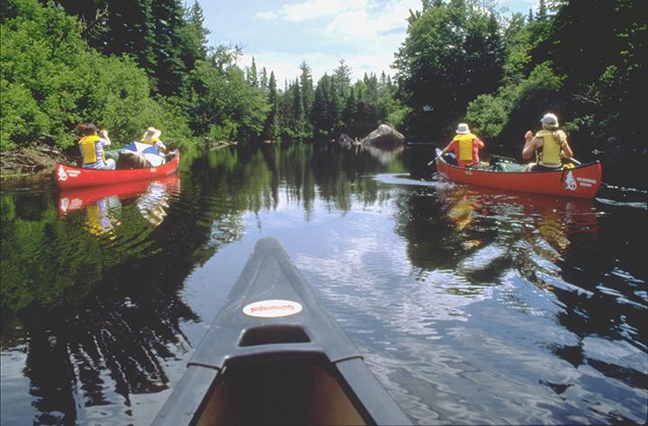 Canoers paddling