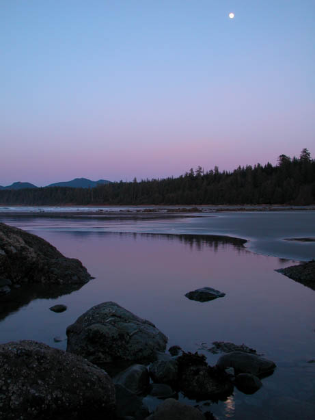 The pink and purple of twilight reflect from the quiet water along a rocky shoreline, with dense forest nearby.