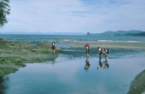 A small group of backpackers crossing a shallow stream along the coast, looking out across to the water to a line of mountains barely discernable along the horizon.