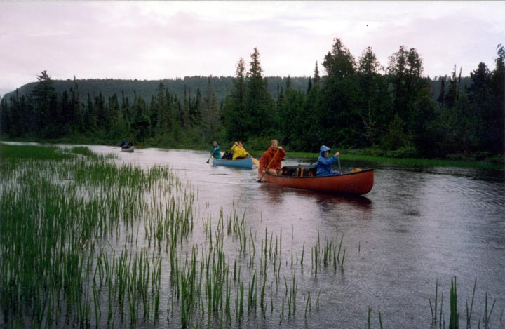 Two people each in a red, blue, and silver canoe, paddling along a narrow channel bordered by flooded grass and low forest.