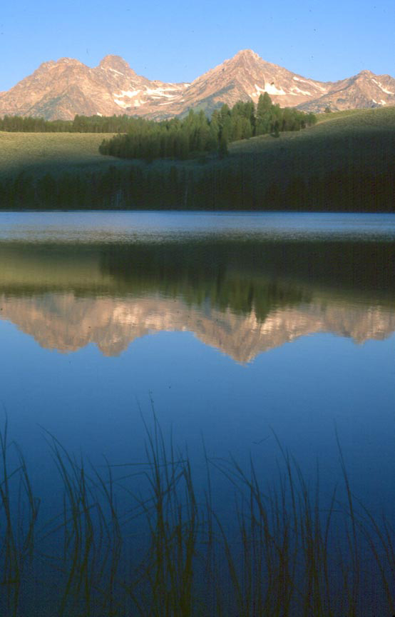 An iconic scene of a placid lake with wispy grass in the foreground, looking across the mirror surface of the water, reflecting high mountains in the distance, bathed in warm morning light.