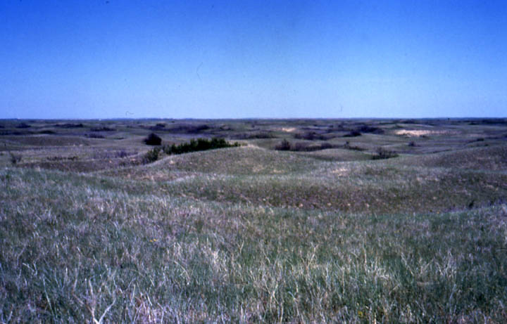 Rolling prairie hills, rolling away to the distant horizon, under an empty blue sky.