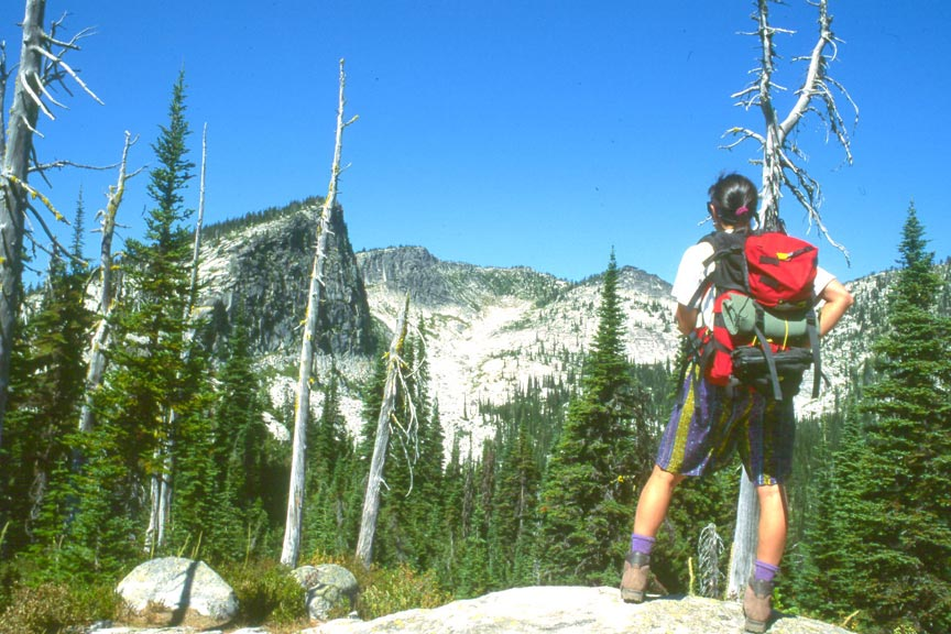A hiker in a red backpack, looking up over the forest trees in the foreground, to high peaks beyond.