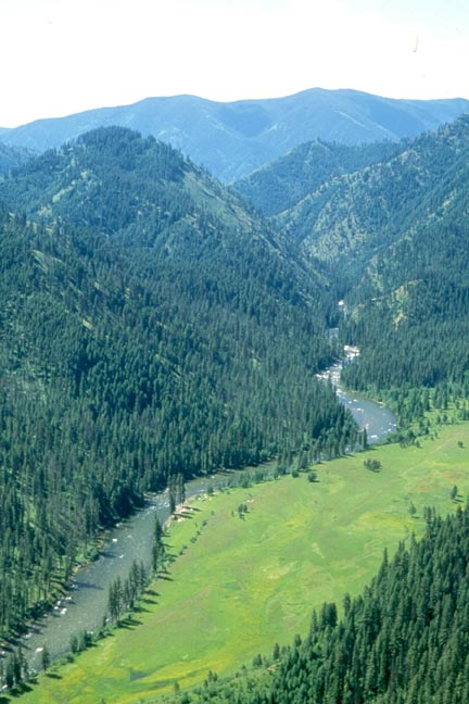 A large meadow borders a small river along the base of a narrow valley, surrounded by dense forest trees.