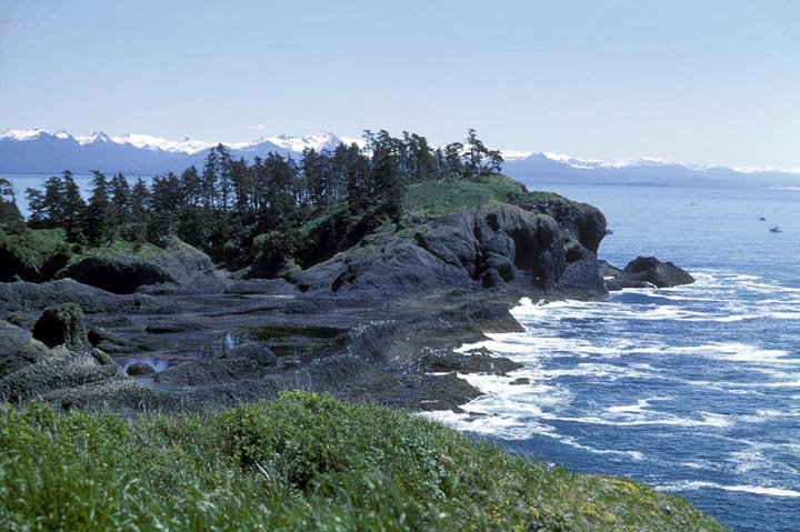 The spine of a mountain range peaked with snow outlines the horizon, defining where the sky ends and the ocean begins. In the foreground of the photo is the rocky edge of the island. The island itself houses green wildgrass and coniferous trees.