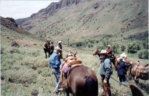A small group of people in the base of an open valley, standing next to several saddled horses.