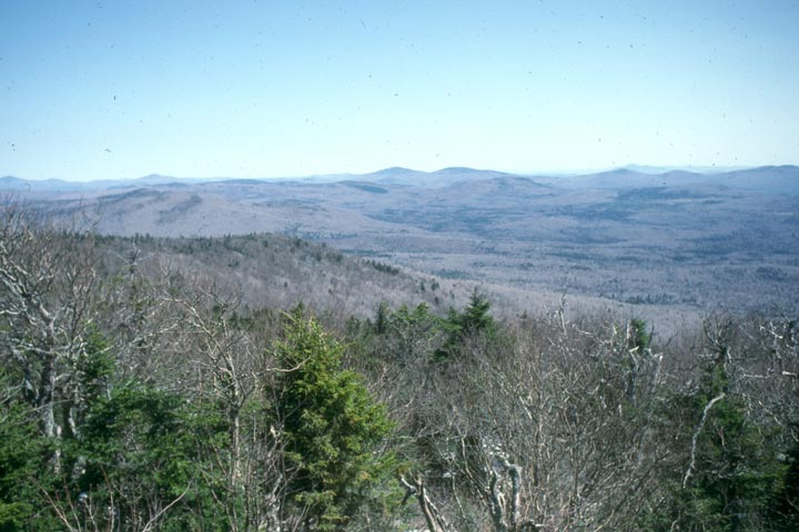 Looking out from a forested summit, at the gray woodland below, freckled with evergreen tress.