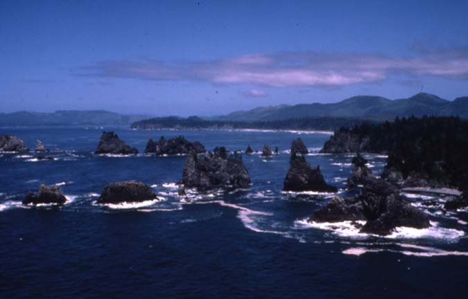A cluster of small rocky pinnacles jutting from the blue water, along a forested coastline.