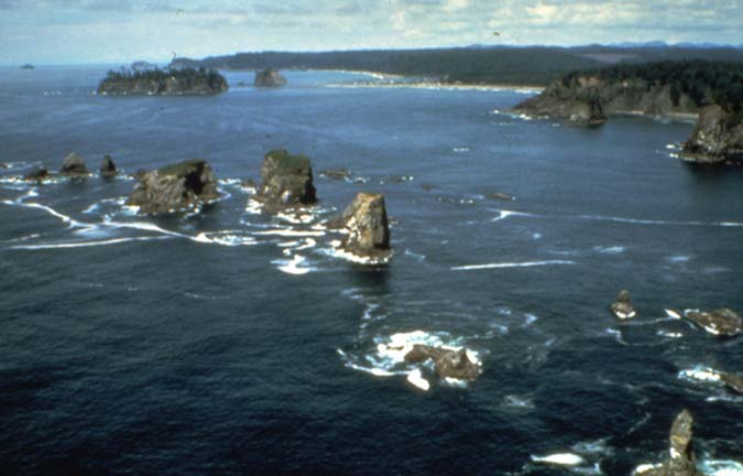 A series of small rocky pinnacles protruding from dark water, along a forested coastline.