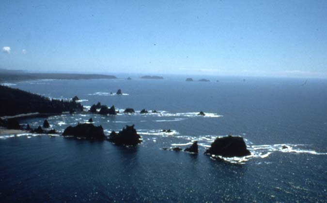 A handful of small rock islands near a forested coastline, stretching away to a hazy blue horizon.