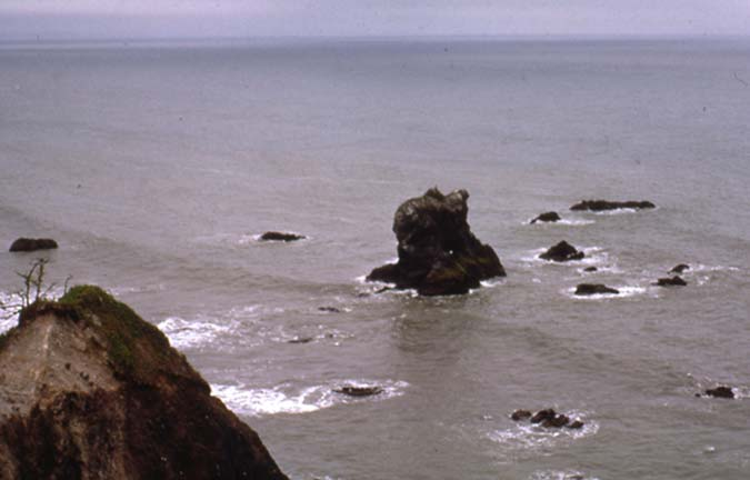 A number of small rocks poking out of the gray water, surrounding a larger rock outcropping along the shroeline.