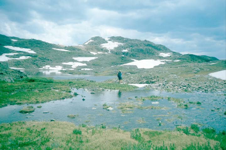 A lone backpacker standing in an alpine bowl, near a marshy pond. Snow and rocky hills rise in all directions, under an overcast sky.