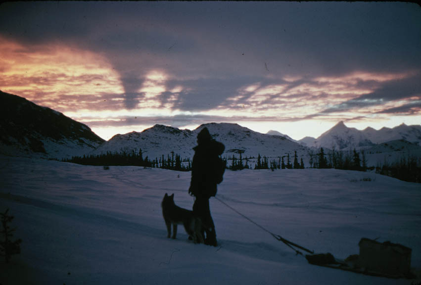A person pulling a small sledge, standing next to his dog, overlooking a streaked sunset above the frozen landscape.