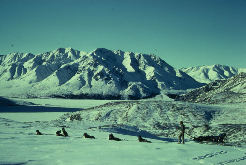 A team of dogs and a man on sled, overlooking a crisp winter landscape, of high jagged peaks, and open tundra.
