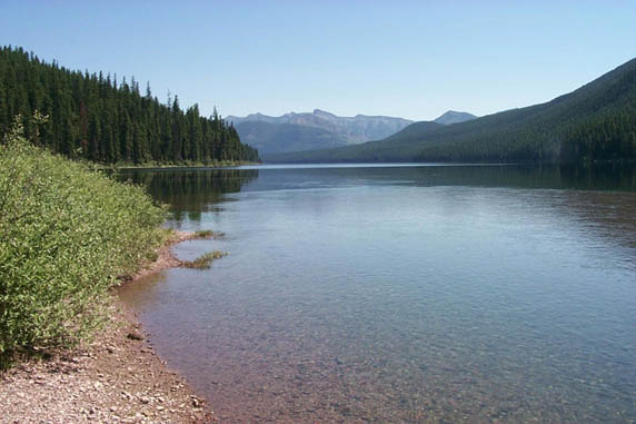 A tranquil scene along the shore of a placid forest lake, the crystalline water stretching away out of site towards high jagged mountains along the horizon.
