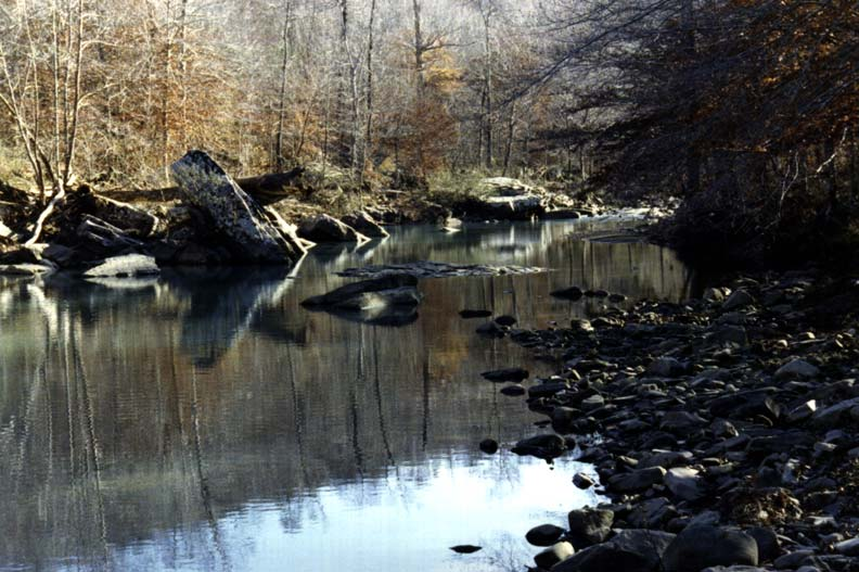 The mirror surface of a small forest pond, reflecting the surrounding boulders against the gray trees.