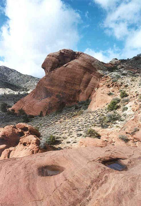 Depressions in bright orange sandstone desert rocks capture small pools of water.
