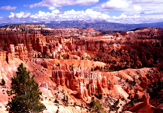 Sharp ridges dotted with small bushes, slice across the landscape in all directions. Large clusters of sandstone pillars rise in irregular patterns, breaking the horizon in the distance under a blue sky with puffy clouds.